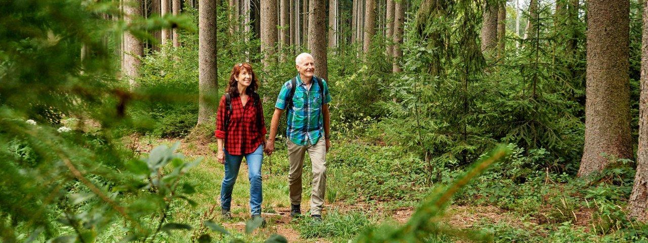 Wandern an Flüssen, im Geopark Ries und im Alpenvorland oder am neuen Premiumwanderweg DonAUwald. © TVABS, Florian Trykowski