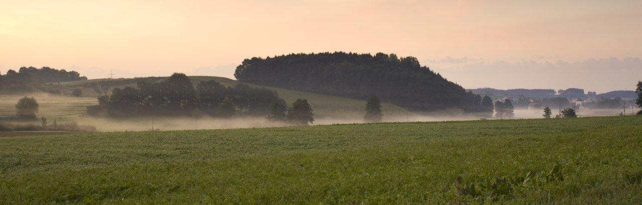 Ecknachtal im Nebel © Fouad Vollmer