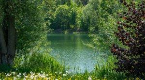 Wasserblicke im DonAUwald, © Best Mountain Artists