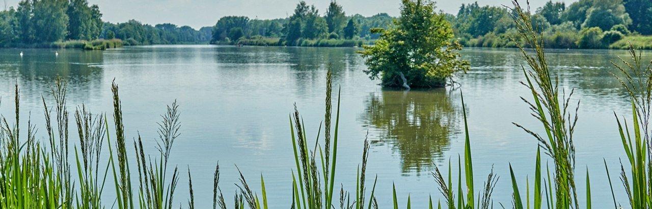 Die Donau © Trykowski