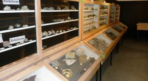 Mineraliensammlung Lauingen © Stadt Lauingen