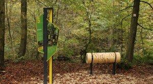 Naturerlebnispfad durch die geheimnisvolle Schlucht bei Thannhausen mit einer spannenden Krimitour. © Stadt Thannhausen