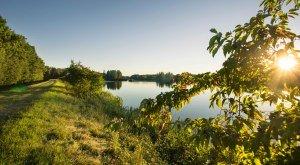 Wandern entlang der Donau und im DonAUwald Premiumwanderweg. © Fouad Vollmer